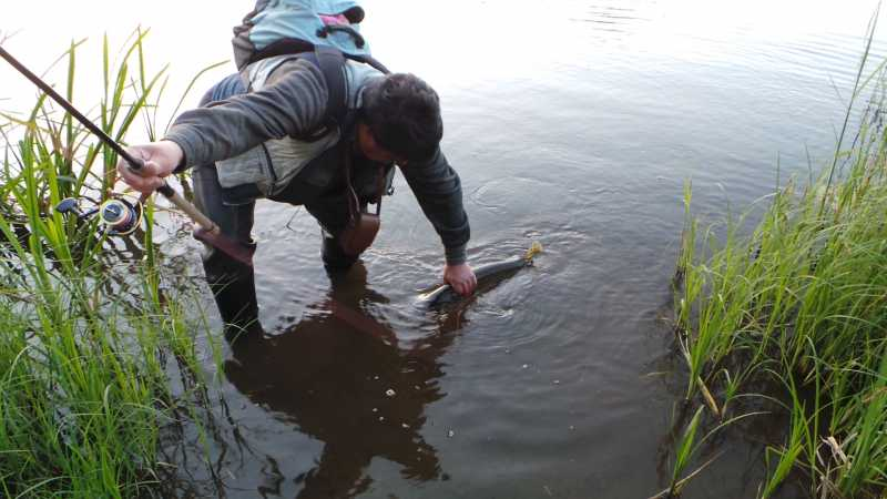 отчет рыбалки за май