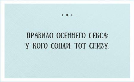 1444109974_1-1.jpg